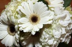 white wedding bouquet ideas | white flowers for wedding | white wedding flower arrangement | dallas wedding photographers
