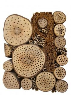 Insect hotel- Do you have wood that looks like this? Might need to invest in some pest control.