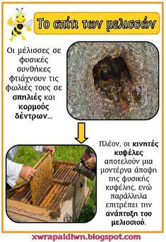 Κυριακάτικη αναρτησούλα μετά από μια εβδομάδα...Ο υπολογιστής ήταν για επισκευή και με το που ήρθε στα χέρια μου ετοιμάστηκα για αναρτησού... Bee Keeping, Spring Crafts, Preschool Activities, Kids And Parenting, School Ideas, Bugs, Education, Insects, Bees