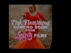 Original Pink Flamingos trailer