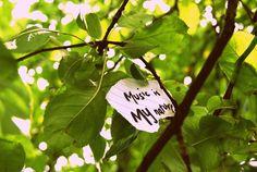 Music is my nature `✿.¸¸.Ƹ✿Ʒ.¸¸.✿´