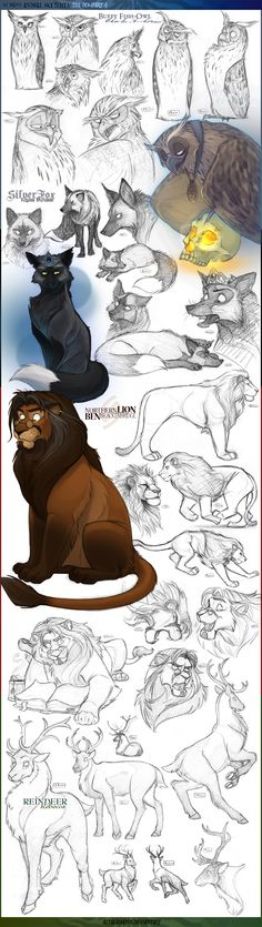 Animal Sketches 3: OCs -Part 1 by Altalamatox.deviantart.com on @deviantART