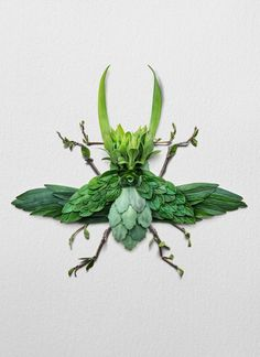 Using flowers, leaves, twigs, and seeds, Canadian artist Raku Inoue creates intricate portraits of insects. Dragonfly Garden Decor, Colossal Art, Pressed Flower Art, Insect Art, Canadian Artists, Nature Crafts, Flower Frame, Art Plastique, Pet Portraits