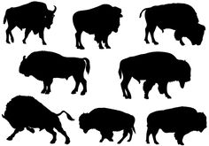 Bison silhouette vectors are added to this animal vector pack which is layered and isolated. You may get EPS, PNG and JPEG files once you purchased this vector product. This bison vector is an ideal choice for farm and animal vector illustrations. ...