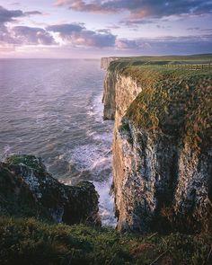 Bempton Cliffs by Ross J Brown, via Flickr