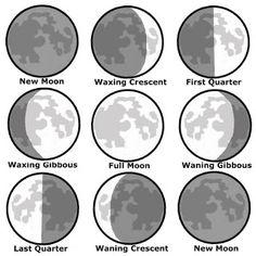 phases of the moon autumnal fall equinox NAMC montessori activity ideas