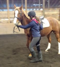 What If YOU Are Causing Your Horse's Behavior Problems?