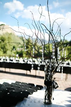 Okay, I think I've got it... spray paint twigs black for some centerpieces and use tealights for others