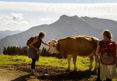 #albeinmalga #trentino #estate @Visit Trentino
