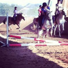 #jumping #with #my #beautiful #horse #yay #love #it