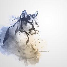 watercolor Lion | mountain lion
