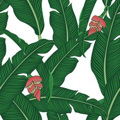 "Check out my @Behance project: ""Vector Banana Leaves Seamless"" https://www.behance.net/gallery/62118013/Vector-Banana-Leaves-Seamless"