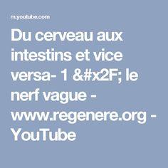 Du cerveau aux intestins et vice versa- 1 / le nerf vague - www.regenere.org - YouTube