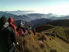 Mt. Pulag Mt Pulag, Hiking, Outdoors, Mountains, Nature, Travel, Walks, Naturaleza, Viajes