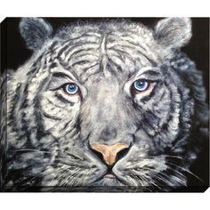 Equally at home in an artful collage or on its own as an eye-catching focal point, this canvas print features a bold tiger design.  ...