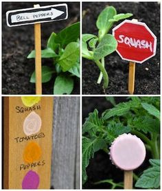 Fare etichette da giardino