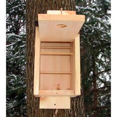 Winter roost boxes give birds a warm place to take shelter when it's bitter cold outside. Make sure it has a hinged opening and places to perch like this one.