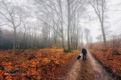 Should we go that way? by eyeofalens #nature #travel #traveling #vacation #visiting #trip #holiday #tourism #tourist #photooftheday #amazing #picoftheday