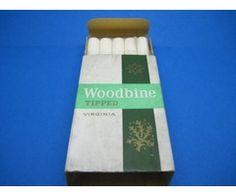 10 Woodbine Filter (LIVE)