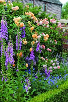 *foxglove,delphinium & roses...beauty!*