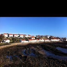 West Shore, Pittenweem, from the coastal path