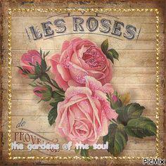 rose vintage