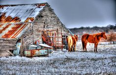 'Old Barn - Springtown, Texas' by jphall Springtown Texas, Barns Sheds, Past, Cabin, Horses, House Styles, Barns, Past Tense, Cabins