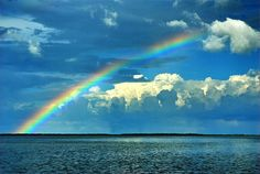 Punta Gorda Rainbow ~ You never know when a rainbow will appear, but it is always special. This one popped up while Larry Bozka was on a photo shoot at Punta Gorda, Florida.