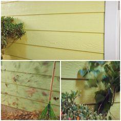 d7885a2bde5 PPG Timeless Interior and Exterior Paint - Interior and Exterior Paint -  The Home Depot