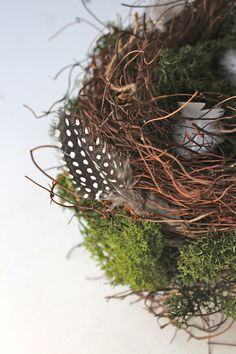 DIY Bird's nest & eggs—love the addition of feathers & moss. Follow link for instructions to decorate eggs for a natural look.
