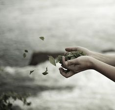 My life - in my hands... but sometimes the wind is just too strong...