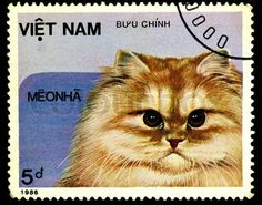 A stamp printed in Vietnam shows house cat, series, circa 1986 Cat Online, Stamp Printing, Vintage Stamps, Cat Quotes, Image House, Stamp Collecting, Cute Cats, Vietnam, Paintings
