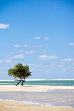 São Miguel do Gostoso - Rio Grande do Norte - Brasil