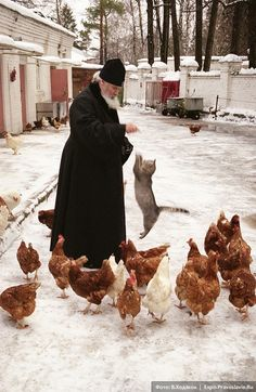 Orthodox priest feeding the chickens while a kitty decides that's delicious Russia Orthodox Priest, Orthodox Christianity, We Are The World, People Of The World, Funny Animals, Cute Animals, Orthodox Easter, Ukraine, Russian Orthodox
