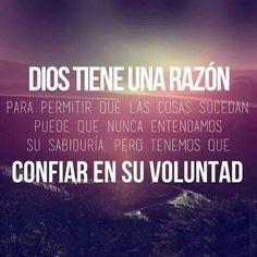 ¡Confía en la voluntad de Dios!
