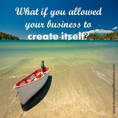 What if you allowed your business to create itself?  www.AccessJoyOfBusiness.com