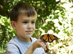 Bugs Month Insect Class Rancho Cordova, California  #Kids #Events