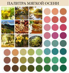 палитра цветотип мягкая осень