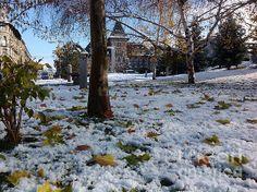 Autumn and Winter 2 by Dan Marinescu All Things, Dan, Memories, Autumn, Wall Art, Winter, Nature, Outdoor, Memoirs