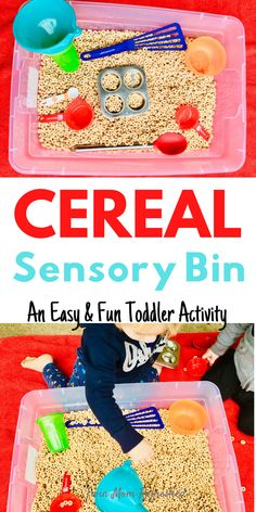 This cereal bin is an easy indoor activity for toddlers or preschools. This simple sensory bin keeps my 2 year old twin boys entertained and learning! activities for 2 year olds boys Cereal Sensory Bin Toddler Activity Learning Games For Toddlers, Babysitting Activities, Indoor Activities For Toddlers, Activities For 2 Year Olds, Indoor Activities For Kids, Infant Activities, Learning Tools, Educational Activities, Sensory Bins