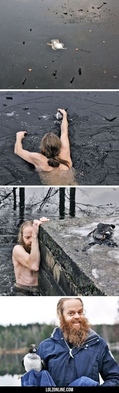 Norwegian Man Saves A Duck#funny #lol #lolzonline