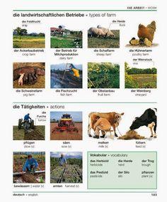 183 - Les exploitations agricoles