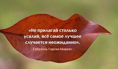 Laws Of Life, Learn Russian, Emotional Intelligence, Life Motivation, Happy Thoughts, In My Feelings, Wise Words, Verses, Psychology