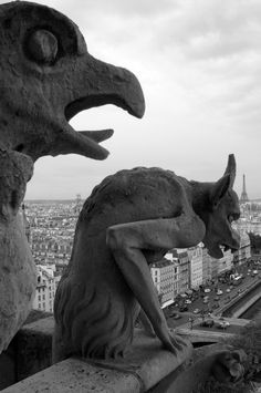 Gargoyles Notre Dame Cathedral Some were really creepy...I love the Gargoyles though...each very different if you take the time to look.