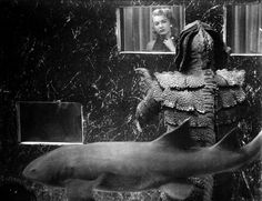 This is from Return of the Creature, isn't it? <les-sources-du-nil: Still from Creature from the Black Lagoon Dir. Classic Sci Fi, Classic Horror Movies, Horror Films, Scary Films, Sci Fi Movies, Scary Monsters, Famous Monsters, Horror Pictures, Black Lagoon
