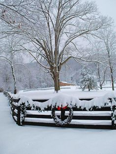 See photos and video of snow on the Blue Ridge Parkway near Asheville, North Carolina, and see ways to enjoy it for winter sports. I Love Snow, I Love Winter, Winter Snow, Winter Christmas, Christmas Scenes, Country Christmas, Christmas Decor, Winter Magic, Winter Scenery