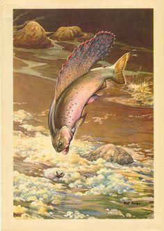 Fish Poster Fishing Wall Art Bob Hines Fish Illustration Fishing Decor Trout Fisherman Gift Fish Painting Lake Trout Fish Print