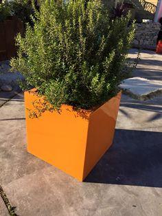 De belles réalisations pour toutes décorations vertes ou fleuries de vos espaces intérieurs ou extérieurs, des couleurs personnalisables .