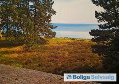 Bentvedsvej 26, 4581 Rørvig - Sommerhus med enestående havudsigt #fritidshus #sommerhus #rørvig #selvsalg #boligsalg #boligdk