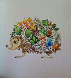 Puercoespin, Bosque encantado. , Enchanted Forest: An Inky Quest & Coloring Book: Johanna Basford: 6063887956574: Amazon.com: Books